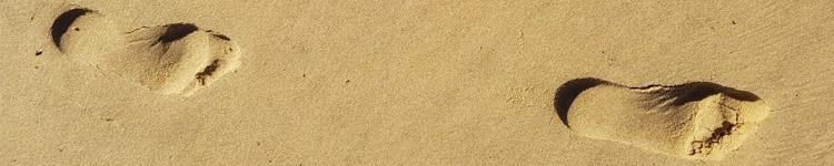pieds bord de mer relaxant réflexologie fleurs de bach mimizan